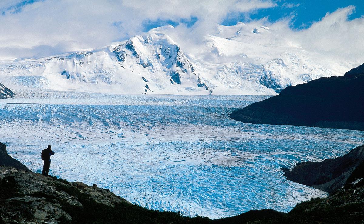 Nuevo artículo científico: Abundancia y actividad microbiana del suelo a lo largo de la cronosecuencia del frente glaciar en el Campo de Hielo Patagónico Norte, Chile.